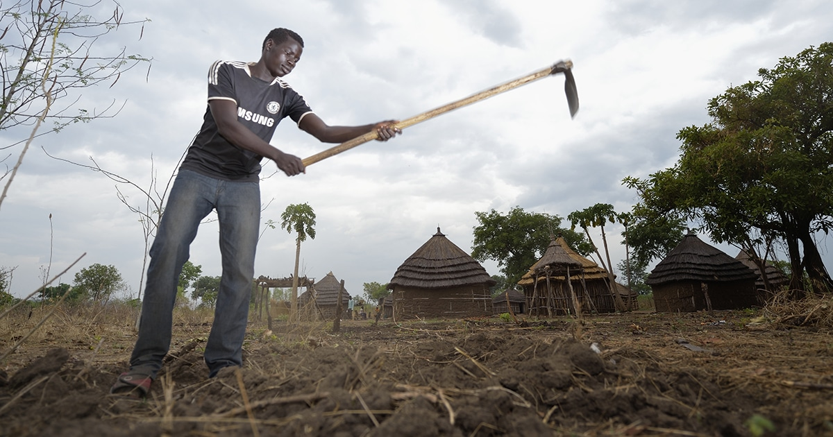 Peter Frisus, who fled fighting during South Sudan's civil war to Mundri where he has relatives, prepares the ground for planting peanuts and corn with the help of agricultural tools provided by the Mundri Relief and Development Association, which is supported by the Primate's World Relief and Development Fund. Photo by Paul Jeffrey