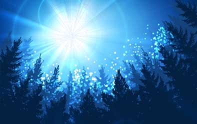 Illustration of a bright star in a blue sky surrounded by evergreen trees