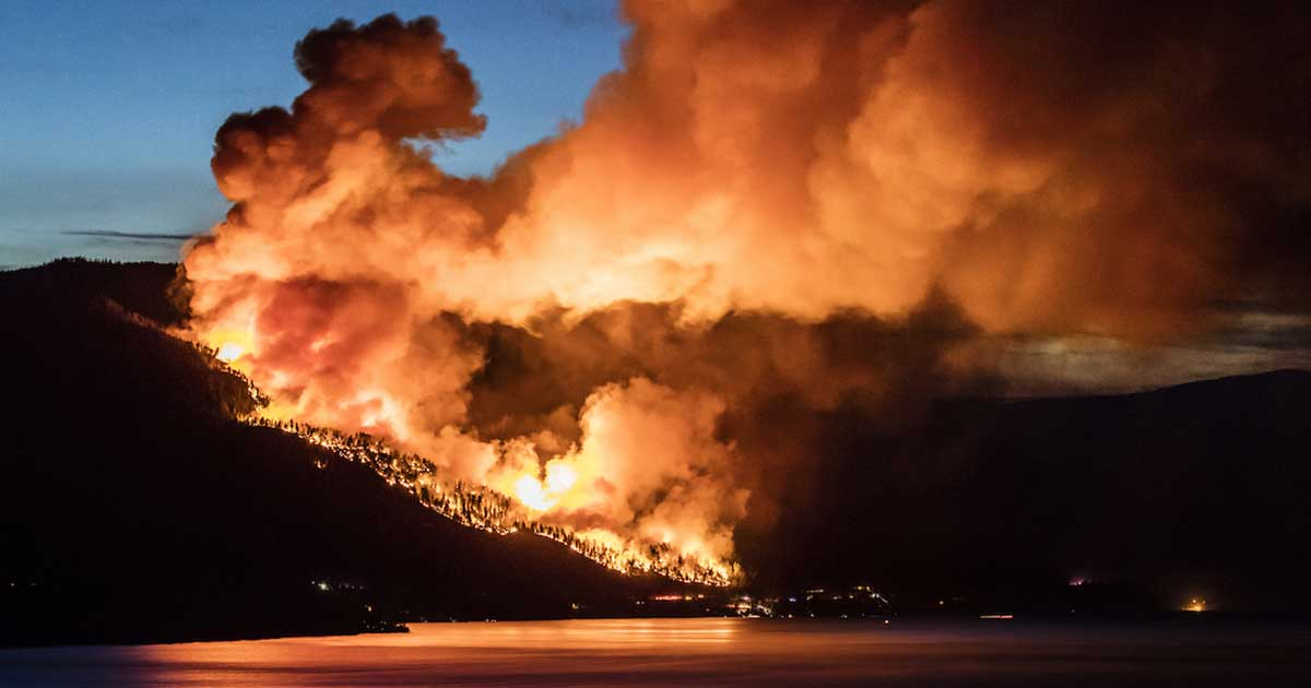 Fire rages on a mountainside in British Columbia, where at least 560 wildfires were reported to tear through Northern B.C.  Photo: Shawn Talbot/Sutterstock